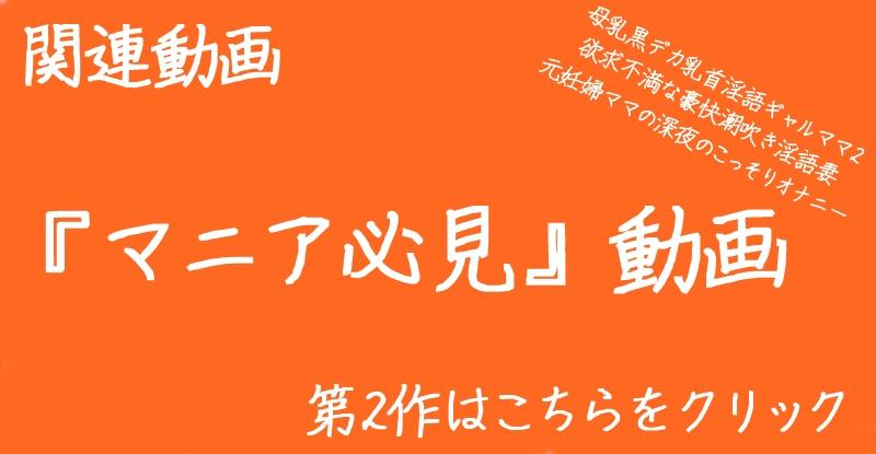 関連動画.jpg
